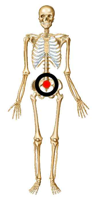 Target the skeleton's pelvis for the best effect.
