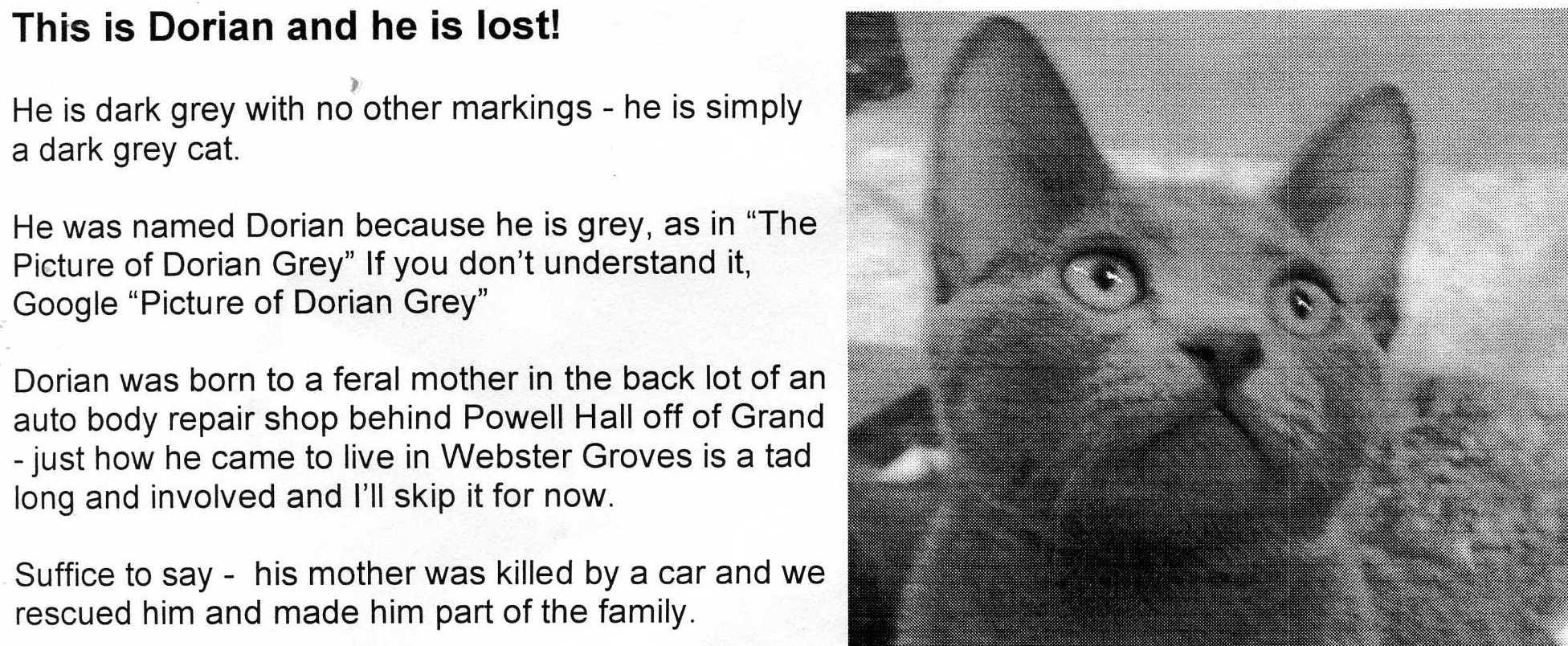 A Lost Cat Broadsheet