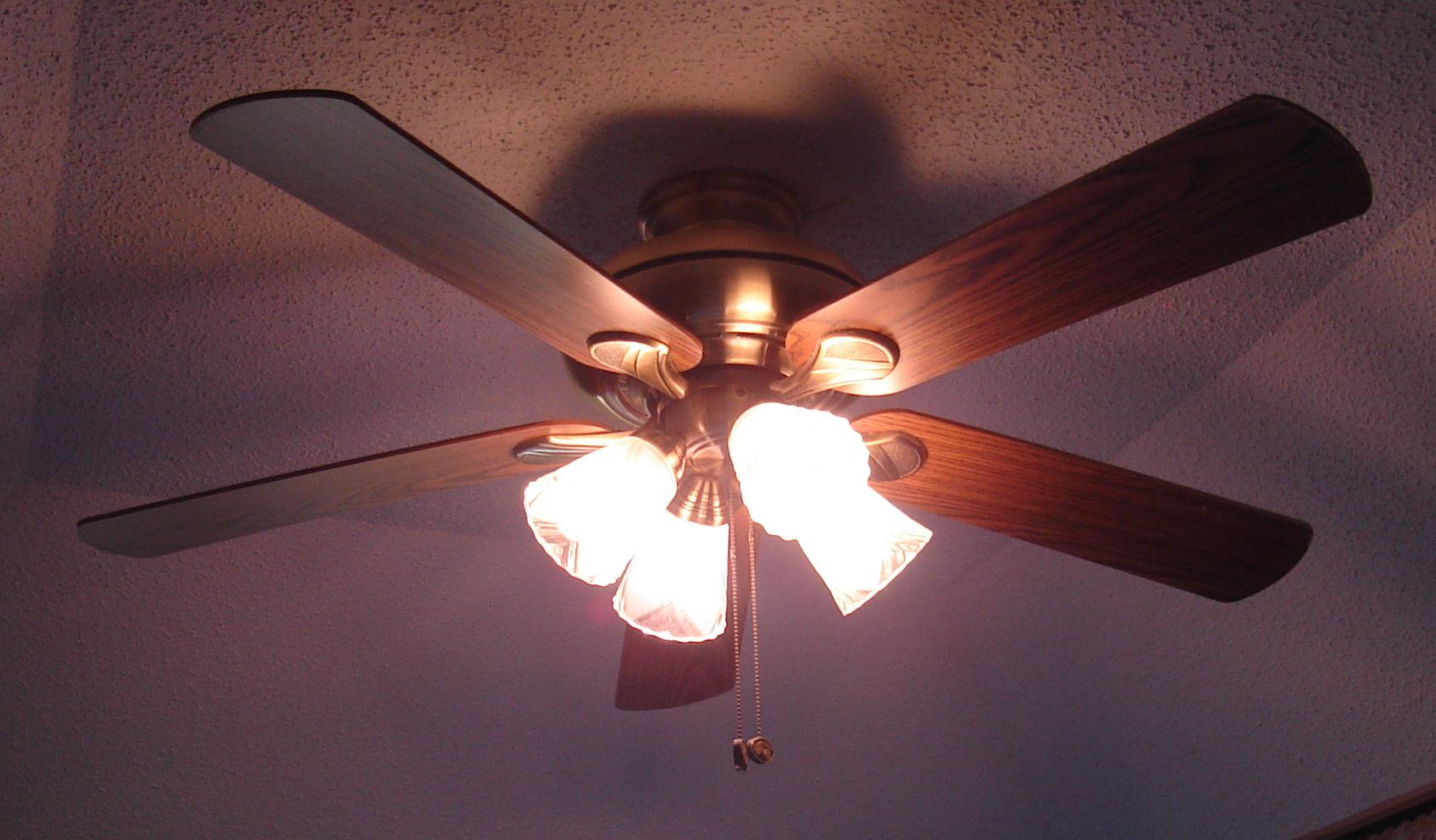 A special ceiling fan