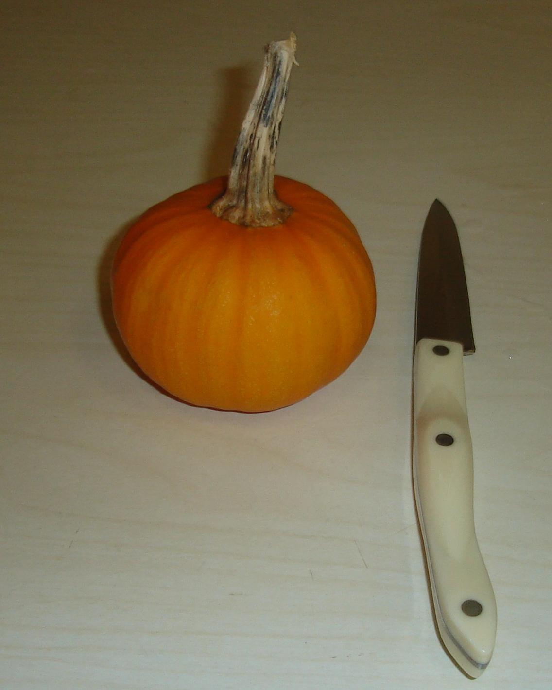 Nogglestead pumpkins 2013