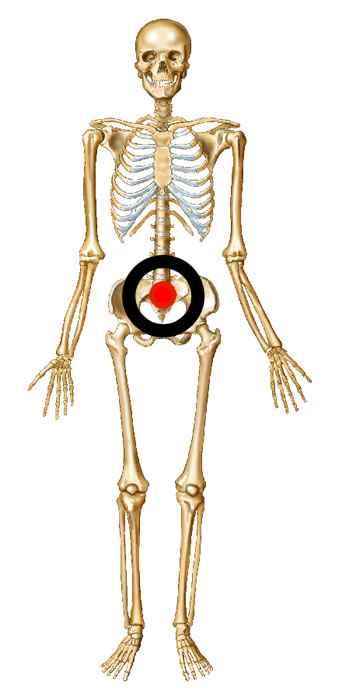 Target the skeleton's pelvis for the best effect.
